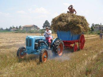 Carro con le gregne trainato da Landini 25 R alla giuda Roberto Tardioli