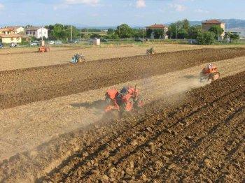 Dimostrazione di aratura con trattori testacalda e non