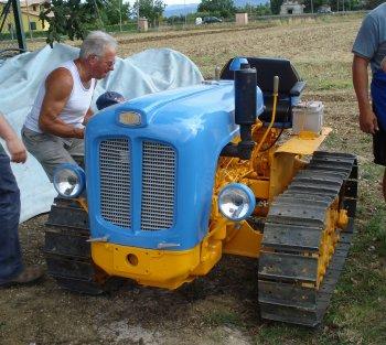 Landini CL 4000 appena restaurato, ancora oggi adoperato per le lavorazioni negli oliveti